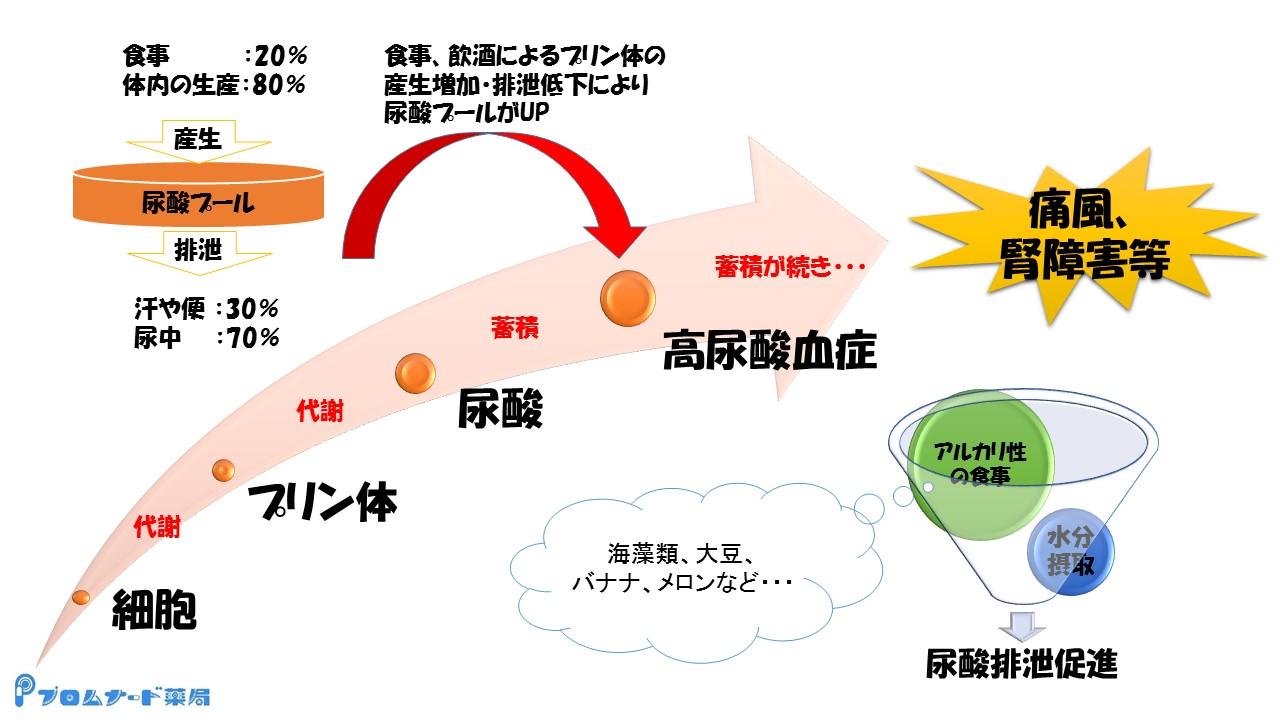 プロムナード便り3月編(尿酸値)2