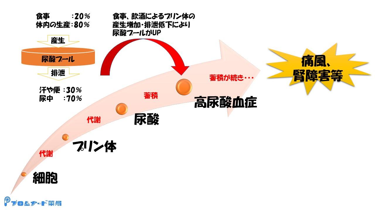 プロムナード便り3月編(尿酸値)1